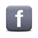 Facebook Social Media Link Button